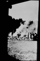 Photo of SS Gaurds burning bodies at a crematoria.