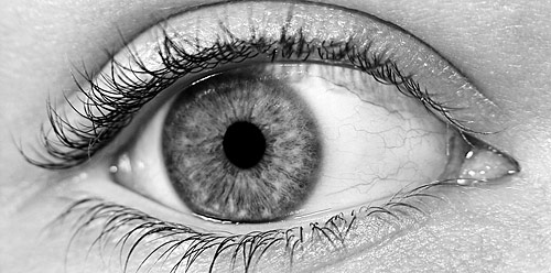 close-up of human eye by Brian C