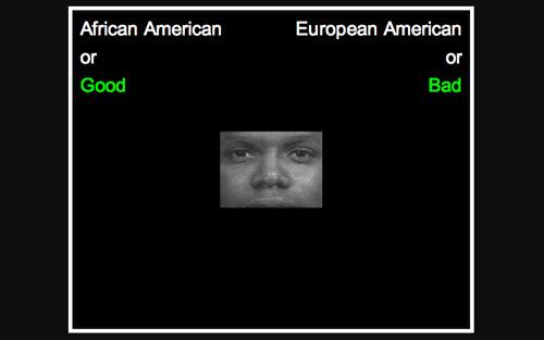 screenshot from Harvard University's Racial Implicit Association Test (IAT)