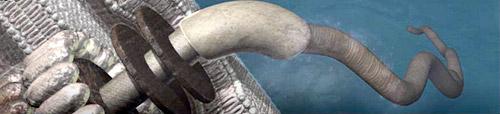 an artist's rendition of a flagellum