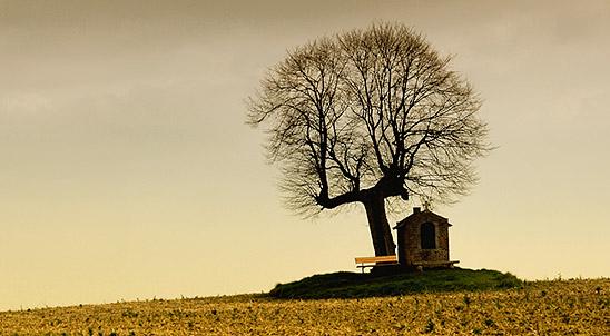 image by TouTouke (http://www.sxc.hu/profile/TouTouke)