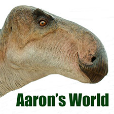 Aaron's World logo
