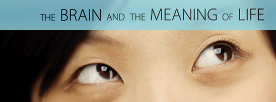 recomposited from details of the book cover for The Brain and the Meaning of Life