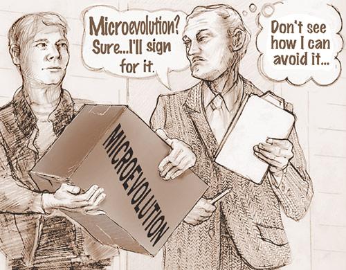 creationism illustration panel 2