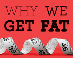 Why We Get Fat (comp from cover)