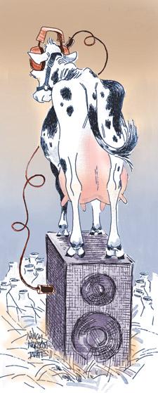 Illustration by Nancy White