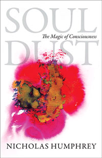 Soul Dust (book cover)