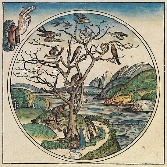 This is a part of a scan of an historical document: Title: Schedelsche Weltchronik or Nuremberg Chronicle. Date: 1493. Author: Hartmann Schedel. (This image is in the public domain because its copyright has expired.)