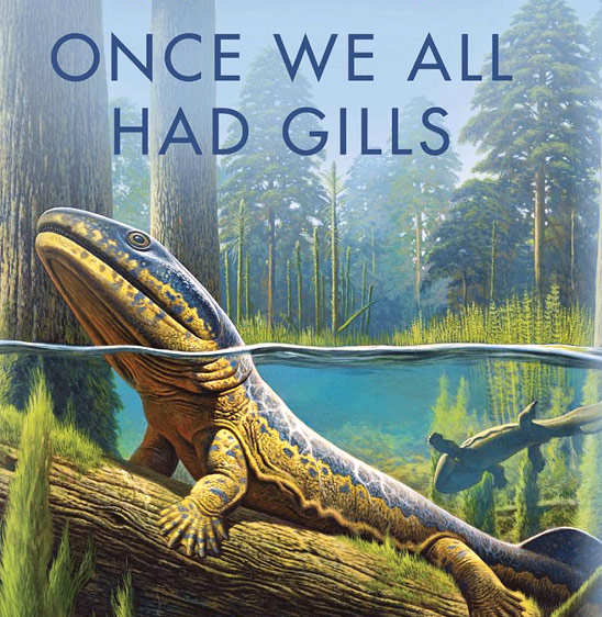 Once We All Had Gills: Growing Up Evolutionist in an Evolving World (detail of cover)