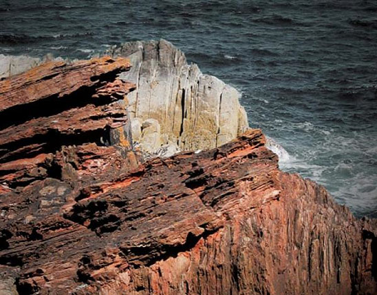 The Rocks Don't Lie: A Geologist Investigates Noah's Flood (cover detail)