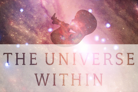 The Universe Within (modified book cover detail comp)