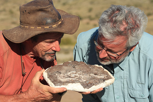Neil Shubin and Roger Smith with two Thrinaxodon fossil. (Courtesy of Tangled Bank Studios, LLC)