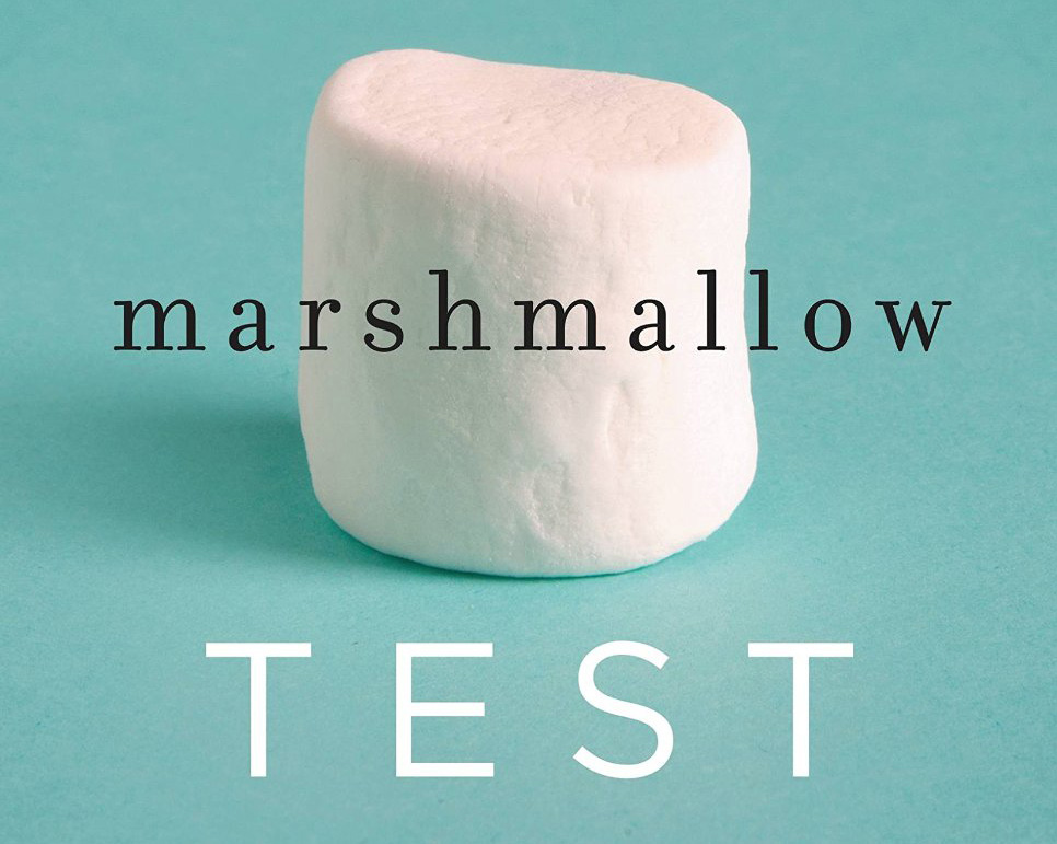 Marshmallow-Test-cover-detail