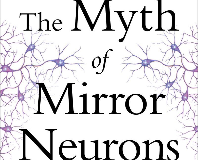 The Myth of Mirror Neurons: The Real Neuroscience of Communication and Cognition (detail of book cover)