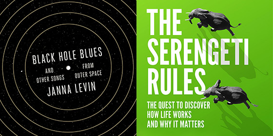 Details of book covers for Black Hole Blue and The Sergenti Rules
