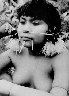 Anthropologist Kenneth Good studied the dietary habits of the Yanomamo.