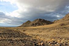 Mojave Desert by David Patton