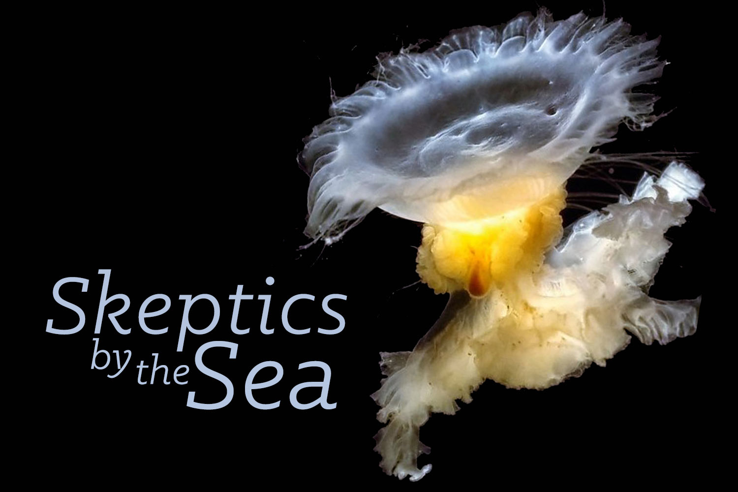 Join us October 11, 2015 for Skeptics by the Sea: Sea lions, dolphins, and whales! Oh my!