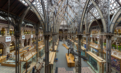 Pitt Rivers Museum Interior, Oxford, England, by Diliff (own work) [CC BY-SA 3.0 (http://creativecommons.org/licenses/by-sa/3.0) or GFDL (http://www.gnu.org/copyleft/fdl.html)], via Wikimedia Commons