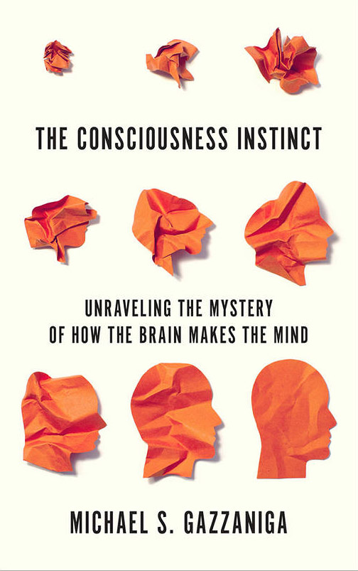 The Consciousness Instinct: Unraveling the Mystery of How the Brain Makes the Mind (book cover)