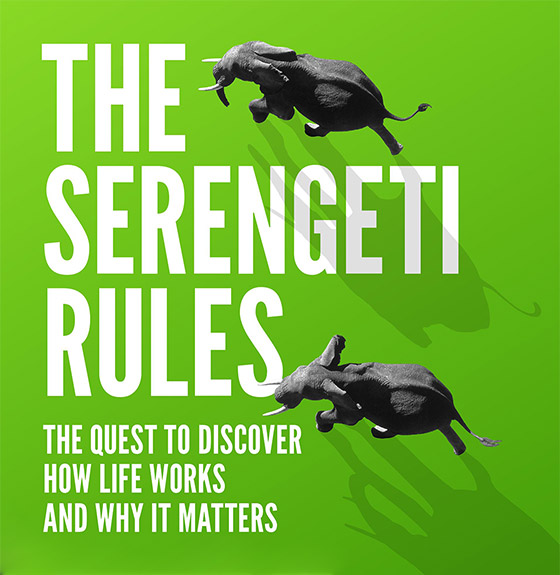 The Serengeti Rules (detail of book cover, by Sean B Carroll)