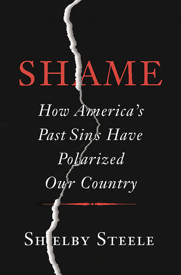 Shame: How America's Past Sins Have Polarized Our Country (book cover)