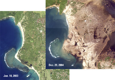 Before and after satellite images of northern Sumatra around Banda Aceh. The areas that were once green turned brown after the tsunami washed the forests and cities away, and killed all the plants with salt water.