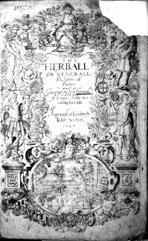 Title page of Gerard's Herball. Image source: www.BioLib.de. GNU Free Document License