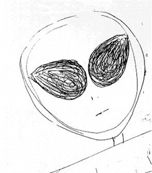 FIGURE 2: another typical alien face drawn by one of Malmstrom's abductee clients